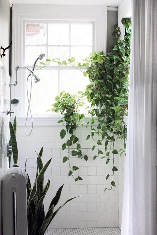 Після: перетворення сіро-зеленої ванної кімнати